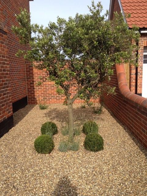 Garden Design And Build Service
