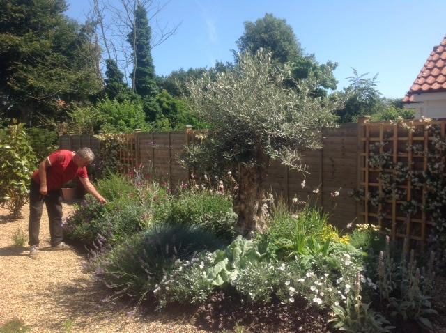 Garden design and build service norfolk