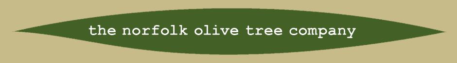 The Norfolk Olive Tree Company