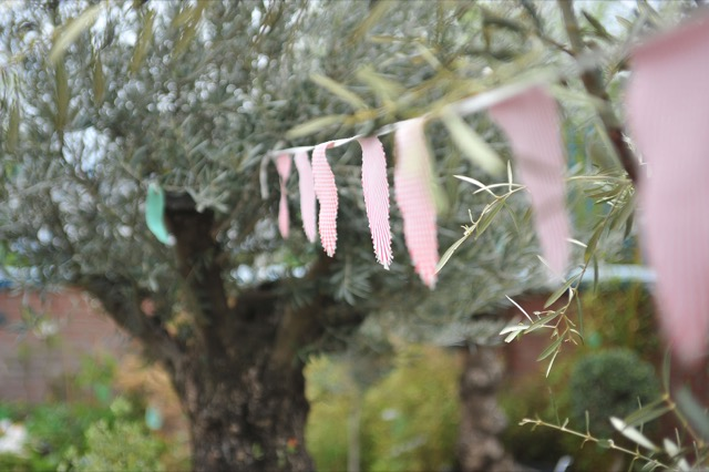 5 Reasons To Add An Olive Tree To Your Wedding Gift Wish List The